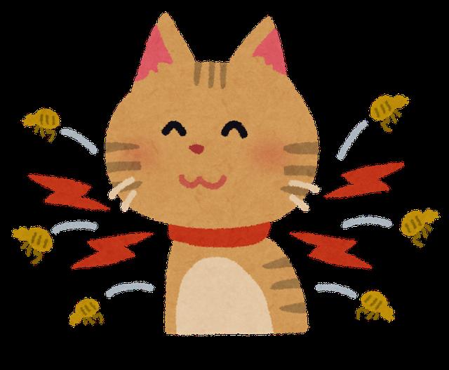 ノミ対策 猫