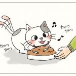 子猫 キャットフード